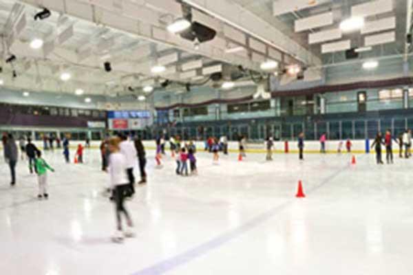 ellenton ice rink