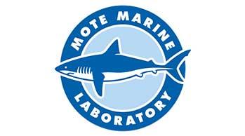 logo foro mote marine