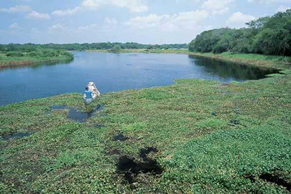 mykka river state park