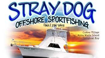 captain-scott-stray-dog-charter-logo